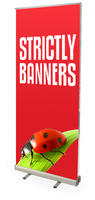 Standard Double Sided Pull up Banners