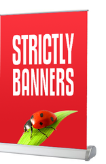 Desktop / Tabletop Pull up Banners