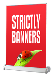 Desktop Pull up Banner - A4